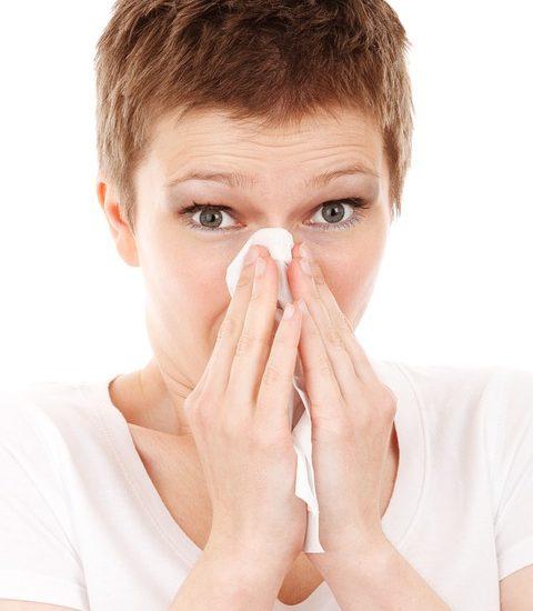 Alergia la ambrozie, între mit și realitate